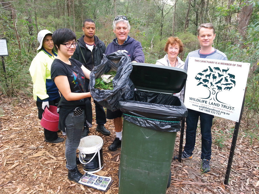 Grant recipient, Wahroonga Waterways Landcare