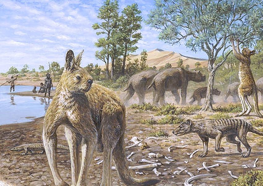 aboriginal australians megafauna