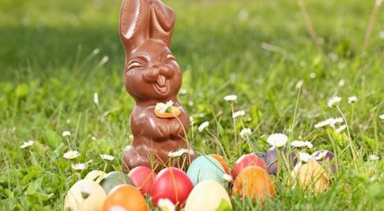 chocolate easter bunny hunt