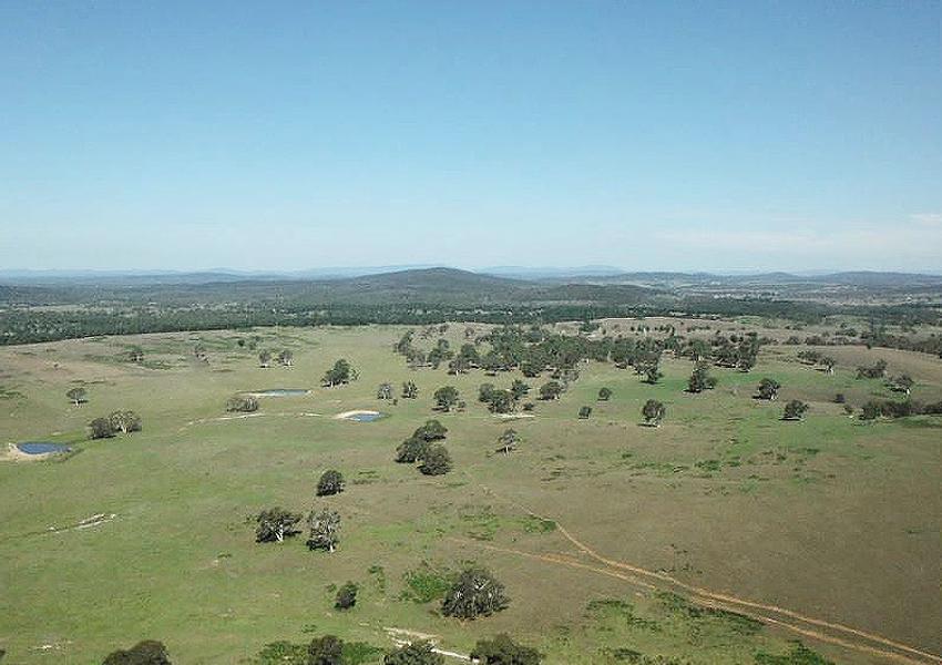 Jupiture wind farm landscape