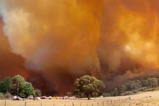 Koorabri bushfire 2013