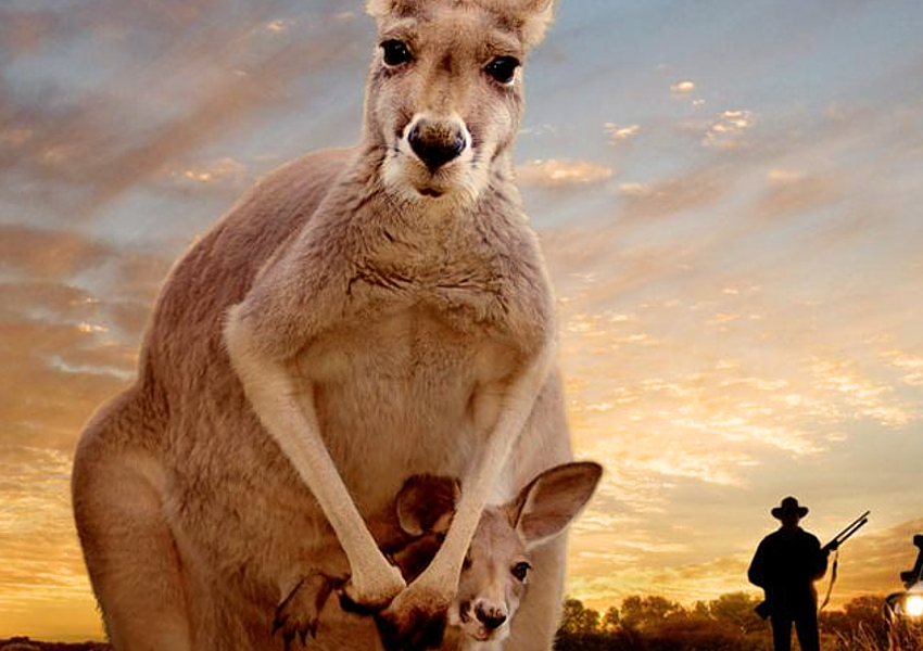 Kangaroo movie (2017)
