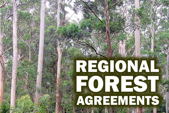 NSW regional forest agreementss