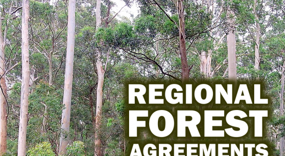 NSW regional forest agreementss