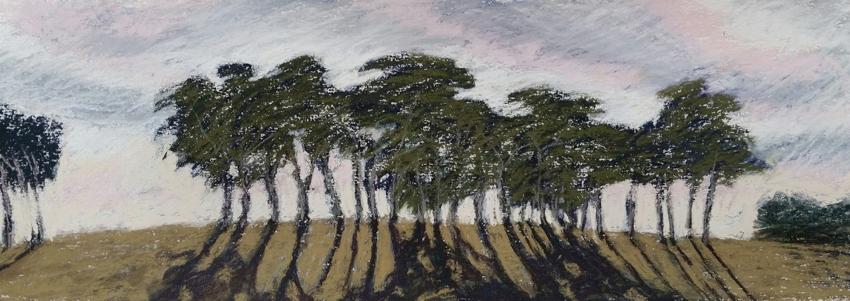 Morning Light by Kim Mahood. Pastel, 57 x 42cm.