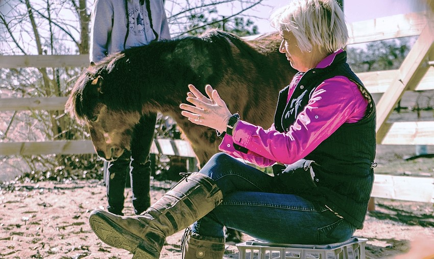 equine therapy Tracey Durr of Carwoola