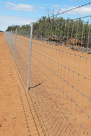 Queensland cluster fences