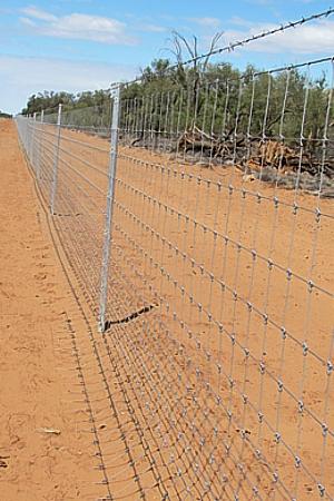 Queensland cluster fences