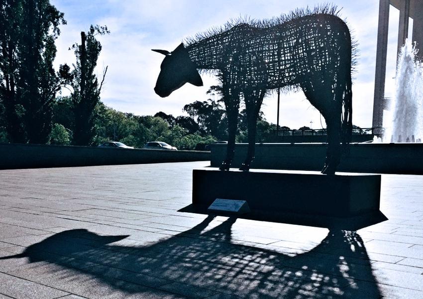 Camourflage-SuzieBleach-AndyTownsend_SculptureBermagui2019