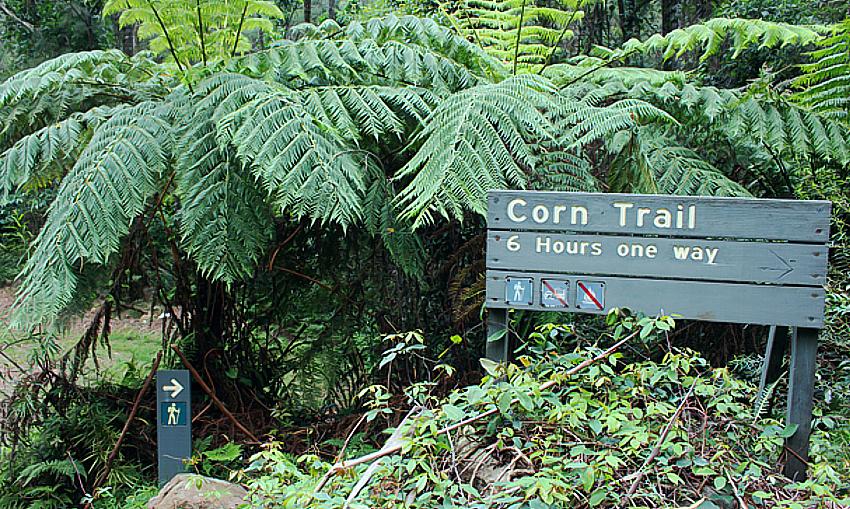 Corn Trail logging