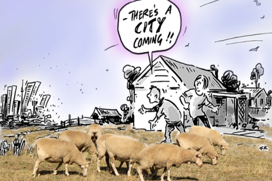 ACT-NSW-cross-border-urbanisation-CARTOON