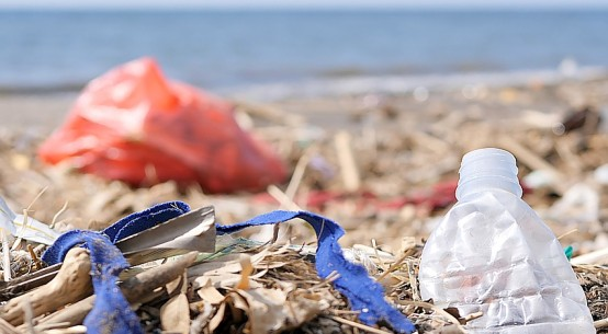 plastic-pollution-beach-cDmitryLoshkin-dreamstime