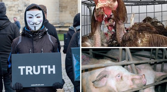 animal-rights-activists-v2-july2019