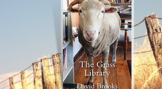 book-review-the-grass-library