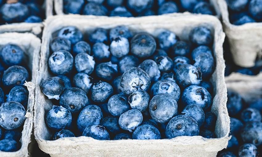 blueberries-Veeterzy-unsplash