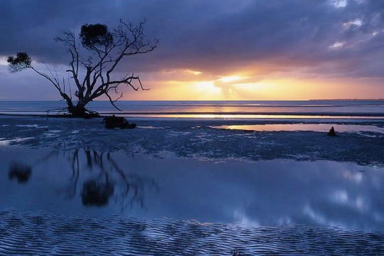 SunriseAtBeachmere-Qld-MarkWasser_Flickr