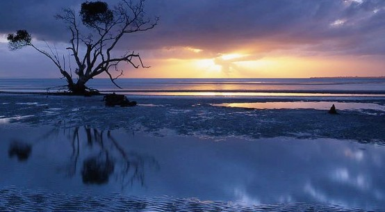 SunriseAtBeachmere-Qld-MarkWasser_Flickr