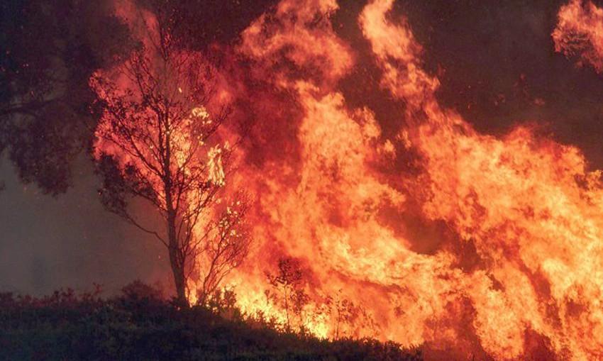 bushfire-season-oct2019