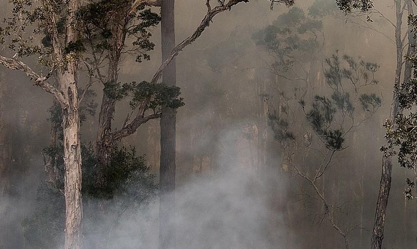 smoke-haze-Ben-Romalis-Shutterstock