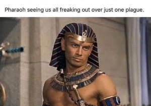 Pharoah-Yul-Brynner-plague-meme