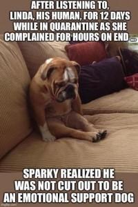 emotional-support-dog