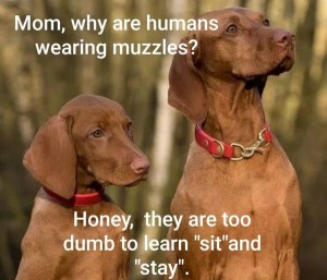 human-muzzles