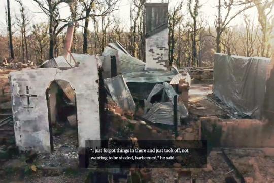 Cobargo-bushfire-survivors-july2020