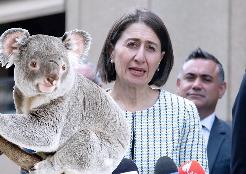 NSW-premier-Gladys-JohnBarilaro-koala-EPBC-sept2020
