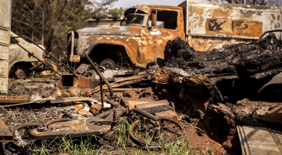 Austn-bushfires-aftermath-crMurbanska00-Dreamstime