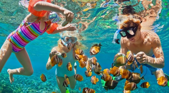 snorkelling-GreatBarrierReef-Dreamstime-DenisMoskvinov