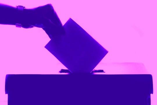 voting-election-2-pexels