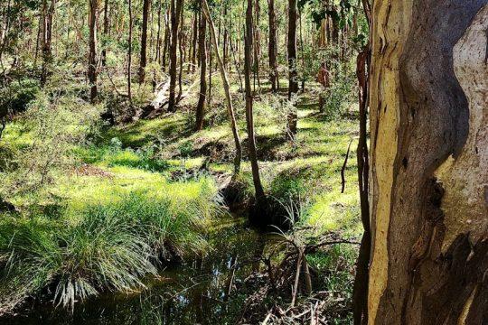 habitat-protection-cwealth-CrMattWhiteDAWES