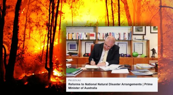 100-days-since-bushfire-reform