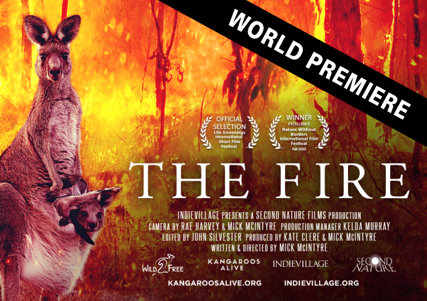 The-Fire-movie-promo-17-mar2021