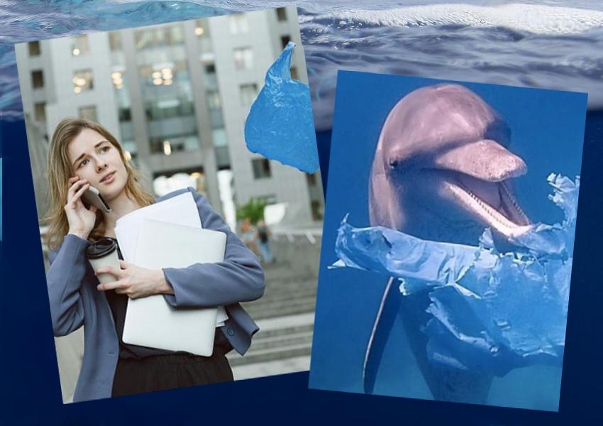 plastic-bag-dolphins